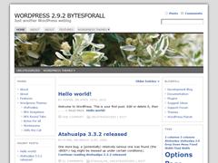 Atahualpa wp theme screen shot