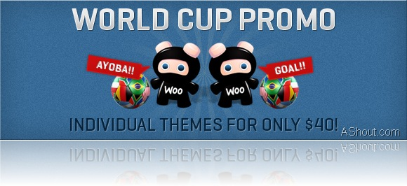 worldcup_promo_wootheme